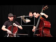 Wilhelm Tell - Uwertura - PROJECT Trio