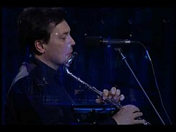 Steve Hackett - Hairless Heart